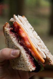 Roasted Turkey Sandwich with Cranberry Chutney